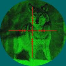 wolf in scope